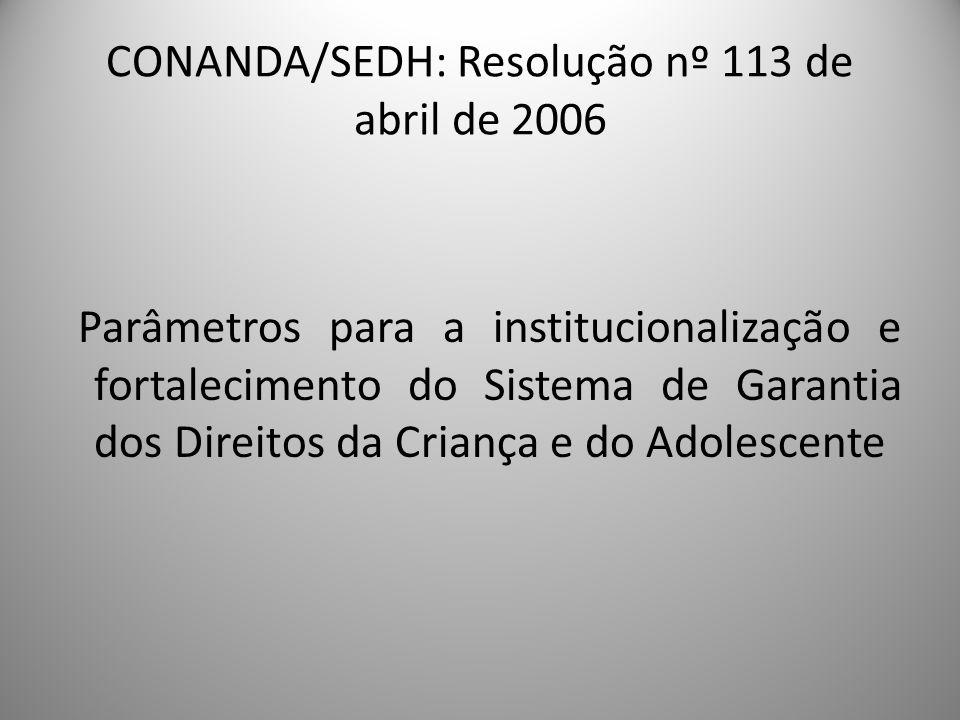 CONANDA/SEDH: Resolução nº 113 de abril de 2006