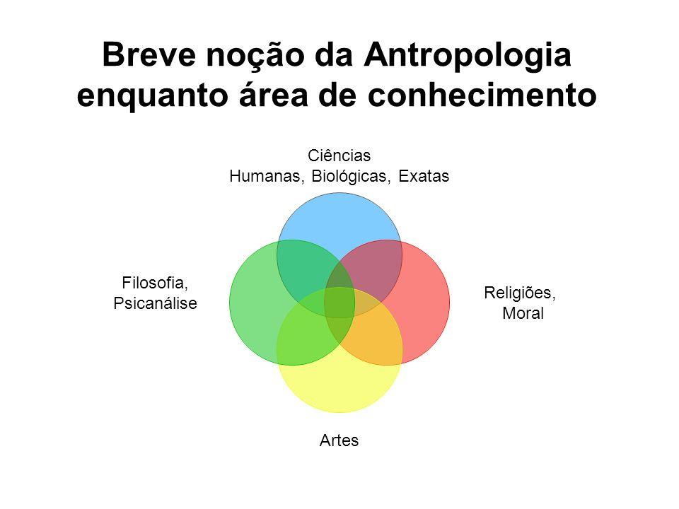 Breve noção da Antropologia enquanto área de conhecimento