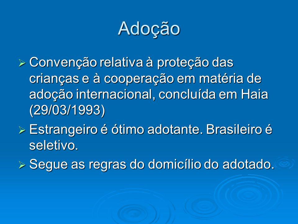 Adoção Convenção relativa à proteção das crianças e à cooperação em matéria de adoção internacional, concluída em Haia (29/03/1993)