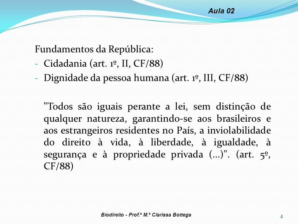 Fundamentos da República: Cidadania (art. 1º, II, CF/88)