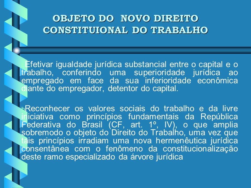 OBJETO DO NOVO DIREITO CONSTITUIONAL DO TRABALHO