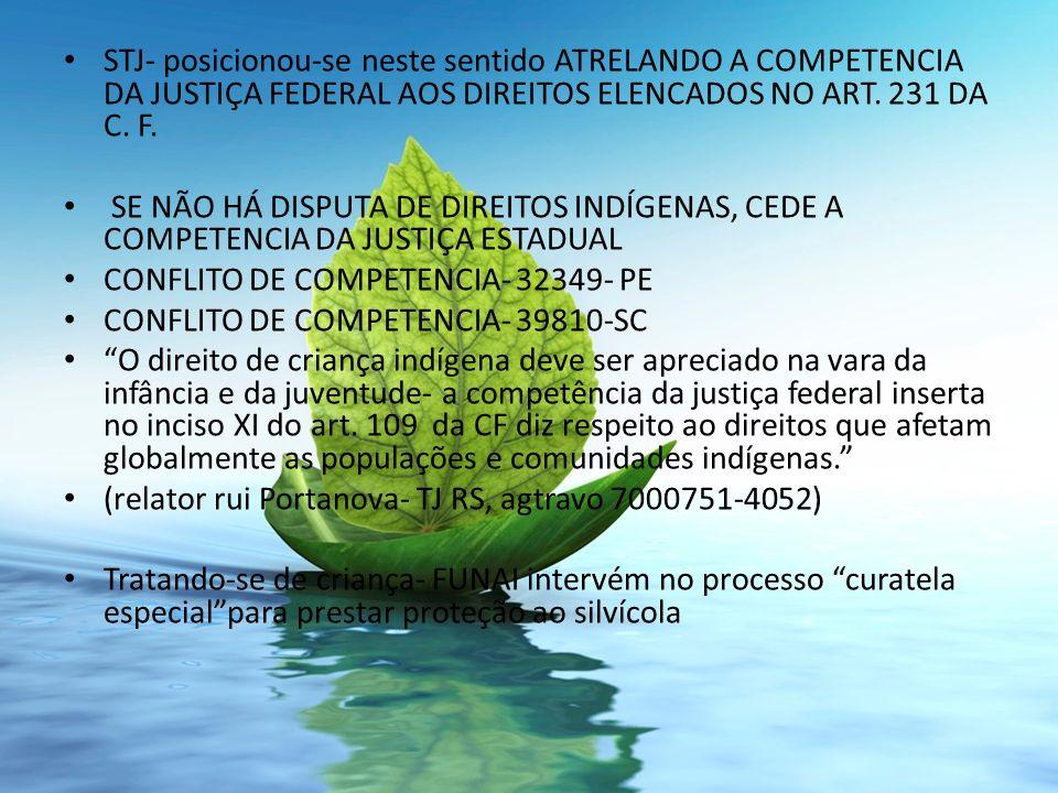 STJ- posicionou-se neste sentido ATRELANDO A COMPETENCIA DA JUSTIÇA FEDERAL AOS DIREITOS ELENCADOS NO ART. 231 DA C. F.