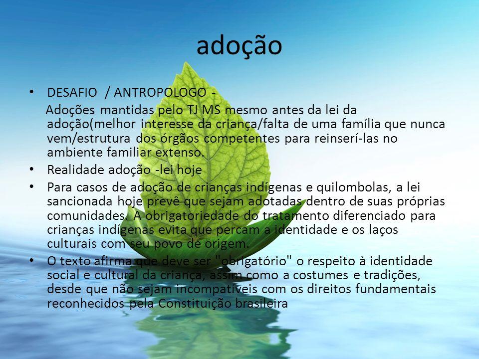 adoção DESAFIO / ANTROPOLOGO -