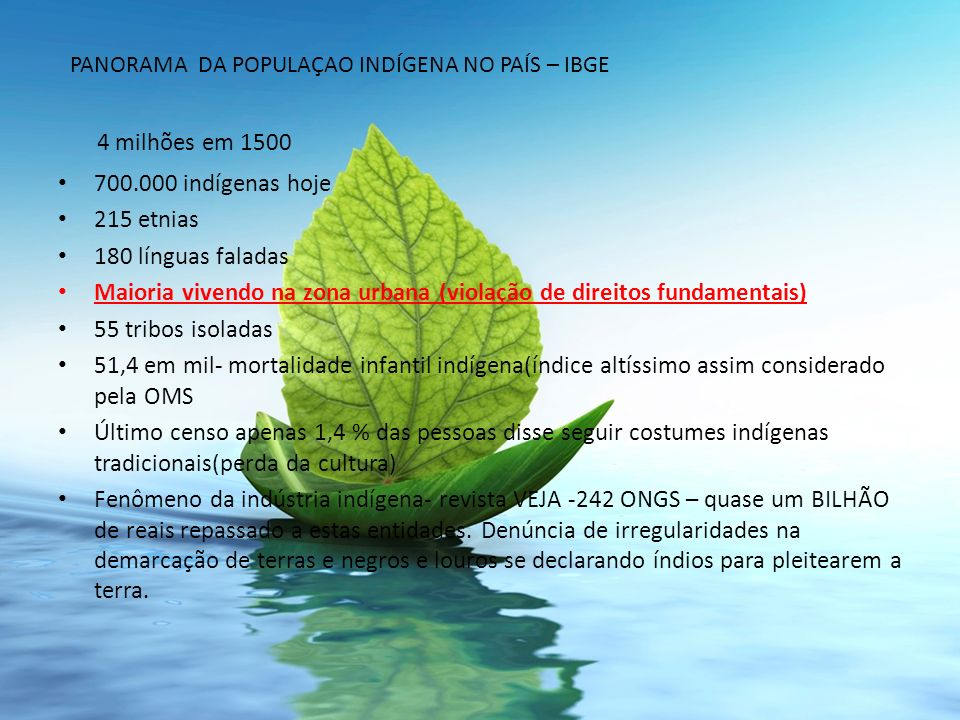 4 milhões em 1500 700.000 indígenas hoje 215 etnias