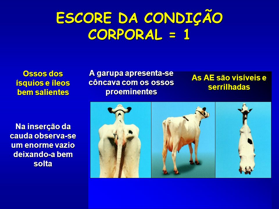 ESCORE DA CONDIÇÃO CORPORAL = 1
