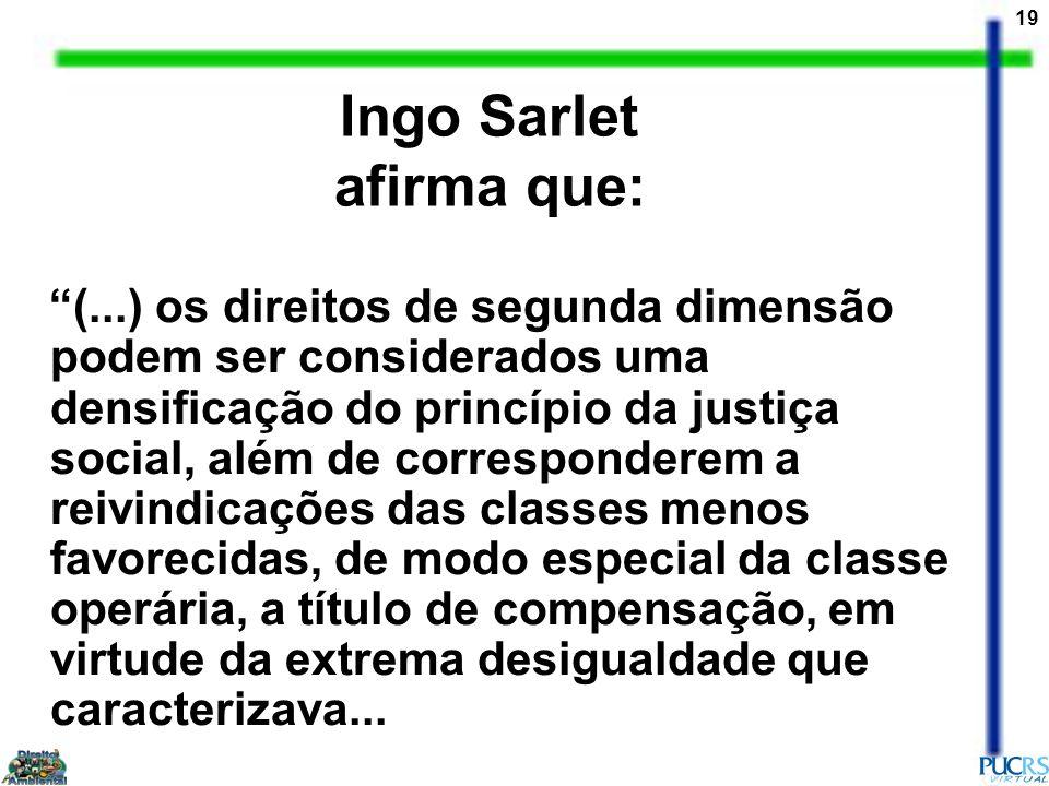 Ingo Sarlet afirma que: