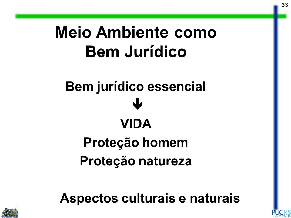 Meio Ambiente como Bem Jurídico