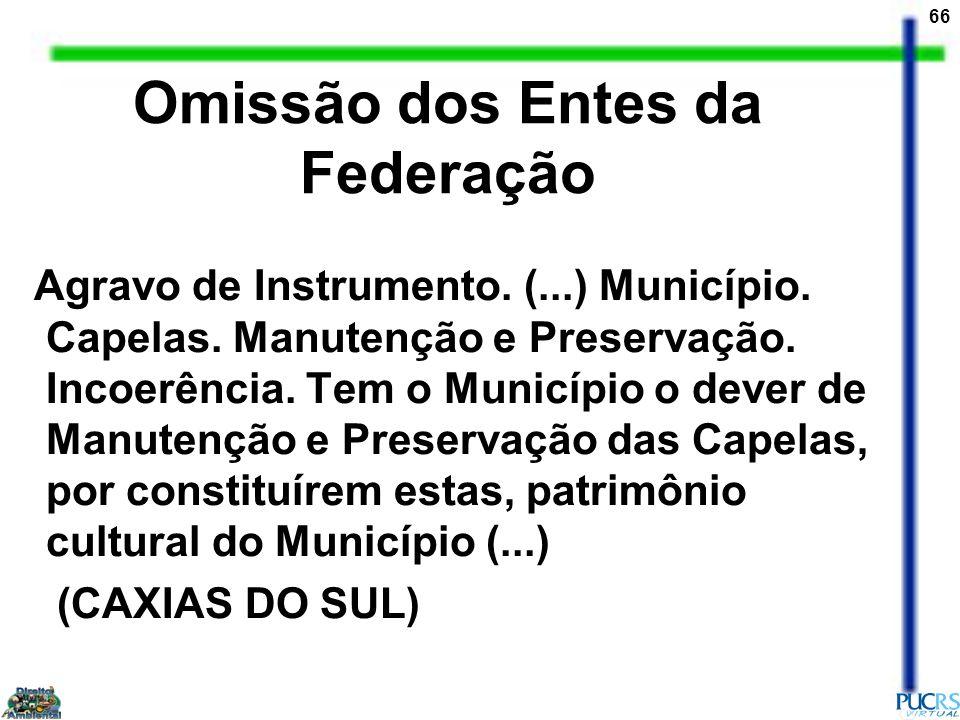 Omissão dos Entes da Federação