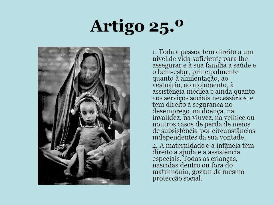 Artigo 25.º