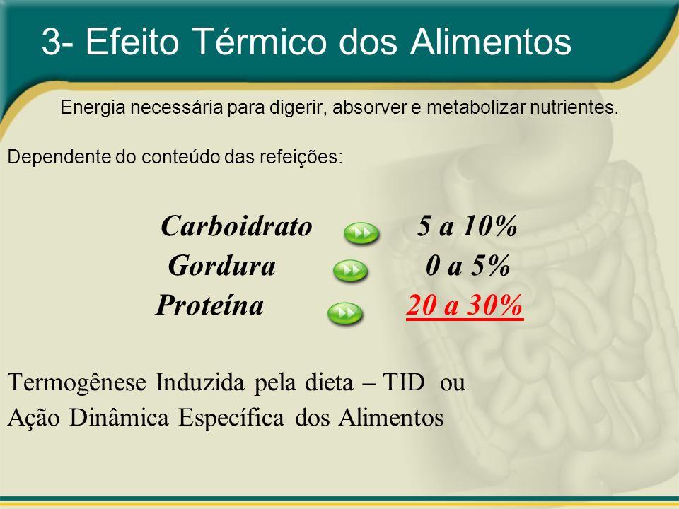 3- Efeito Térmico dos Alimentos