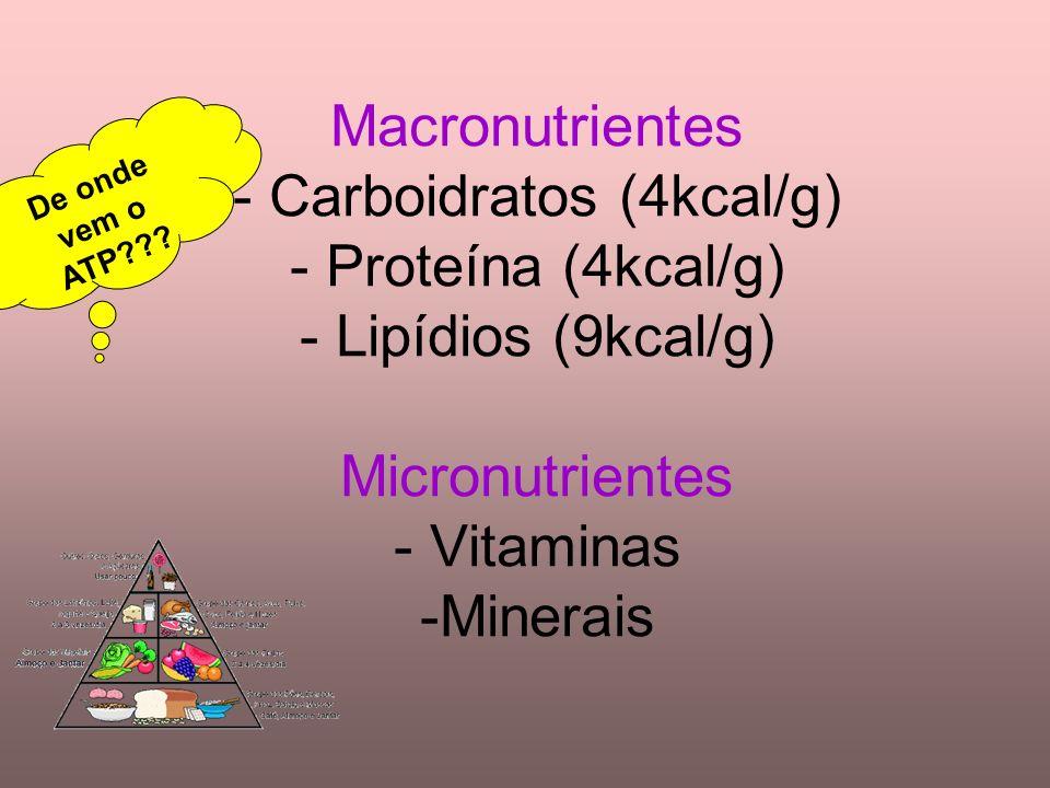 Macronutrientes - Carboidratos (4kcal/g) - Proteína (4kcal/g) - Lipídios (9kcal/g) Micronutrientes - Vitaminas -Minerais