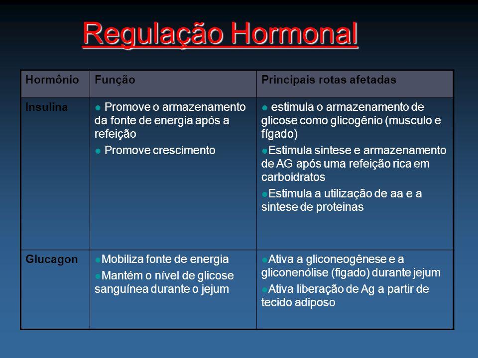 Regulação Hormonal Hormônio Função Principais rotas afetadas Insulina