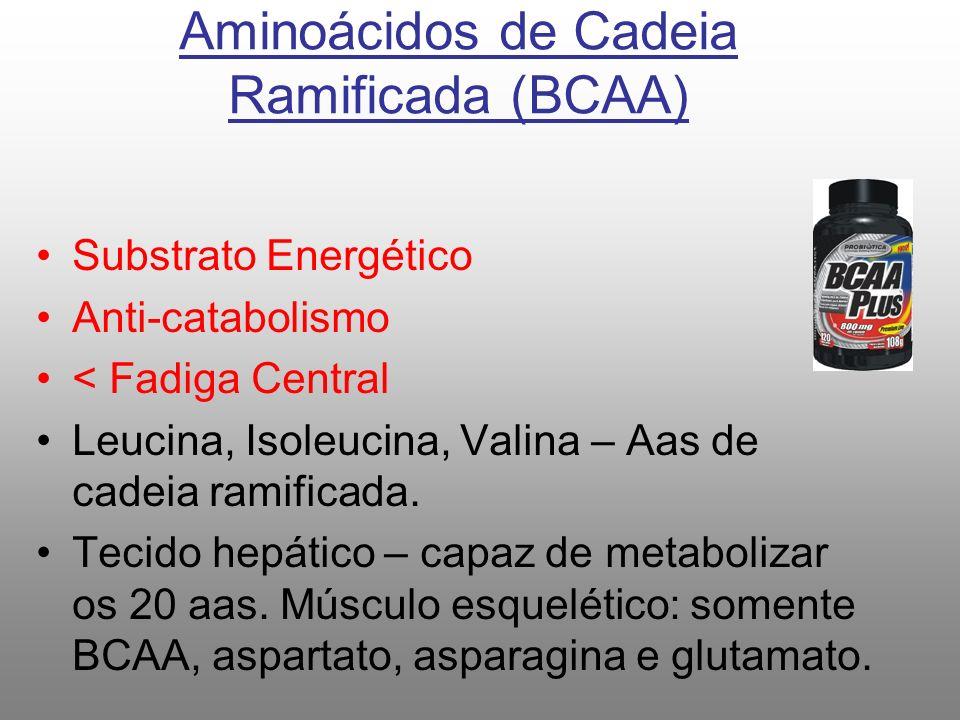 Aminoácidos de Cadeia Ramificada (BCAA)
