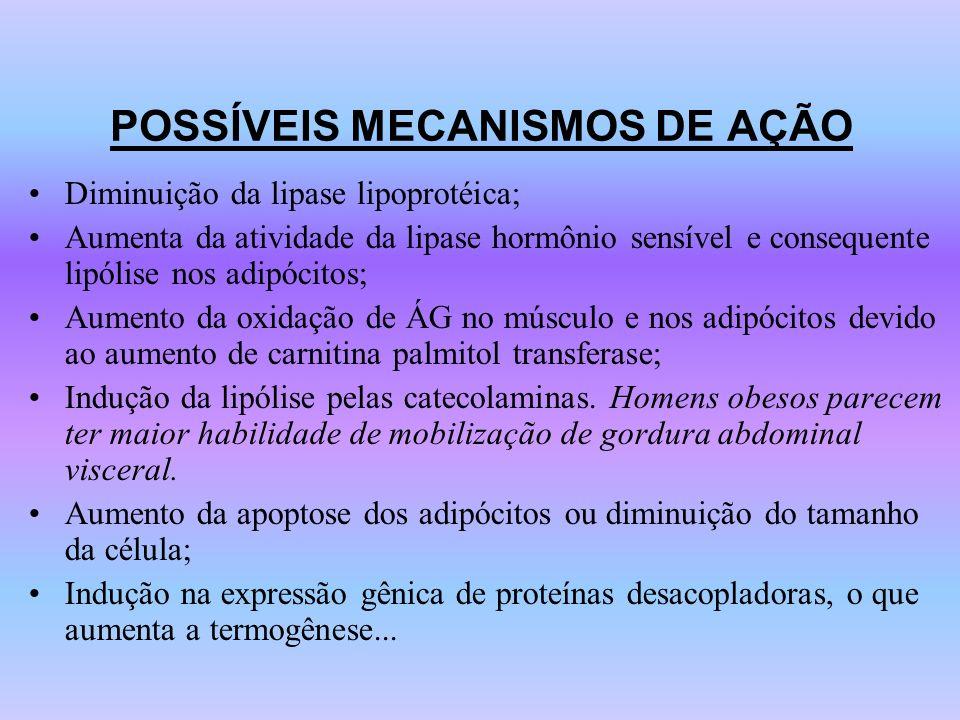 POSSÍVEIS MECANISMOS DE AÇÃO