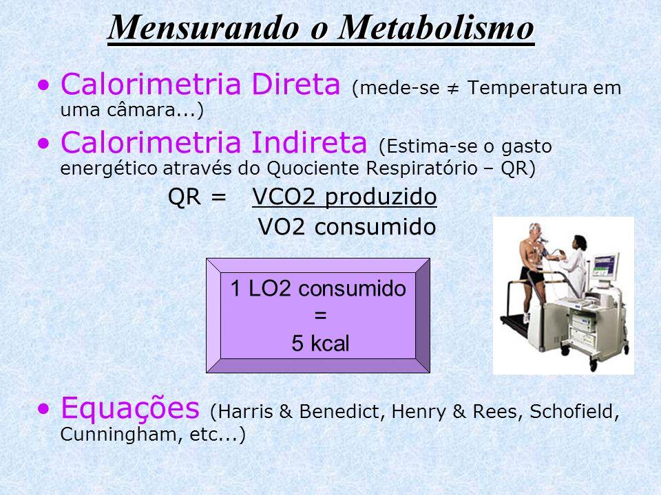 Mensurando o Metabolismo