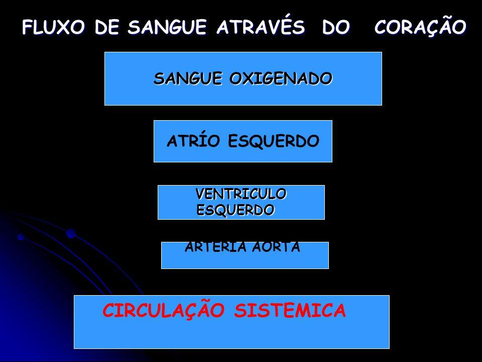FLUXO DE SANGUE ATRAVÉS DO CORAÇÃO