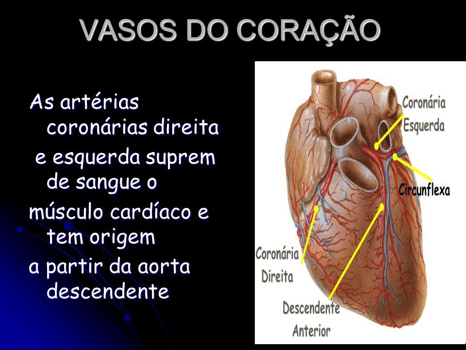 VASOS DO CORAÇÃO As artérias coronárias direita