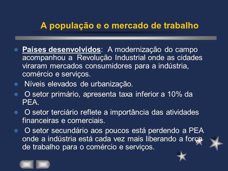 A população e o mercado de trabalho