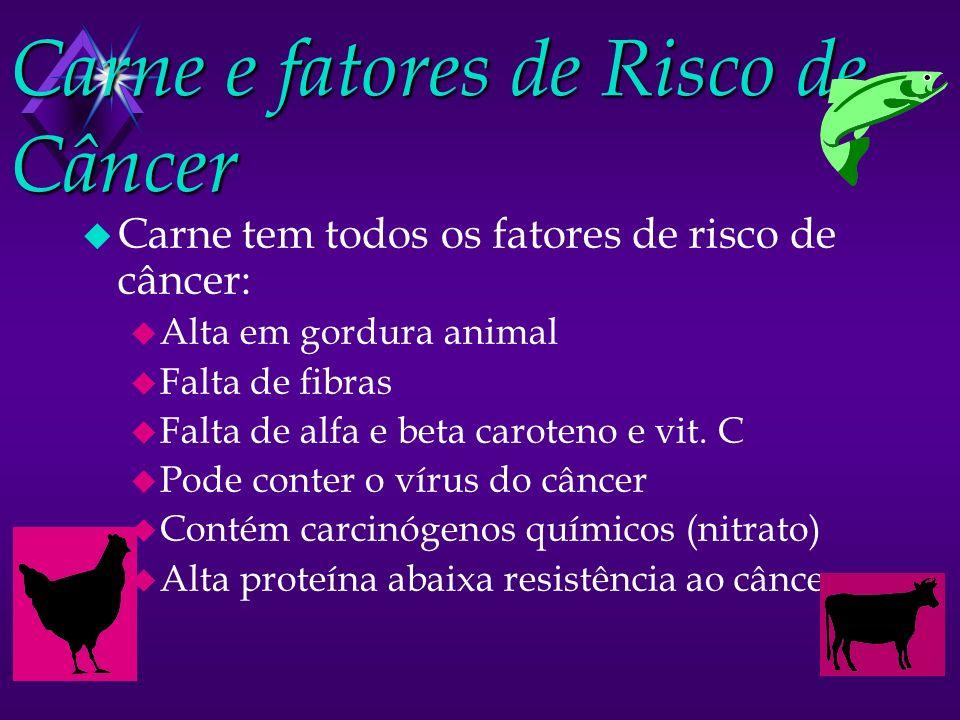 Carne e fatores de Risco de Câncer