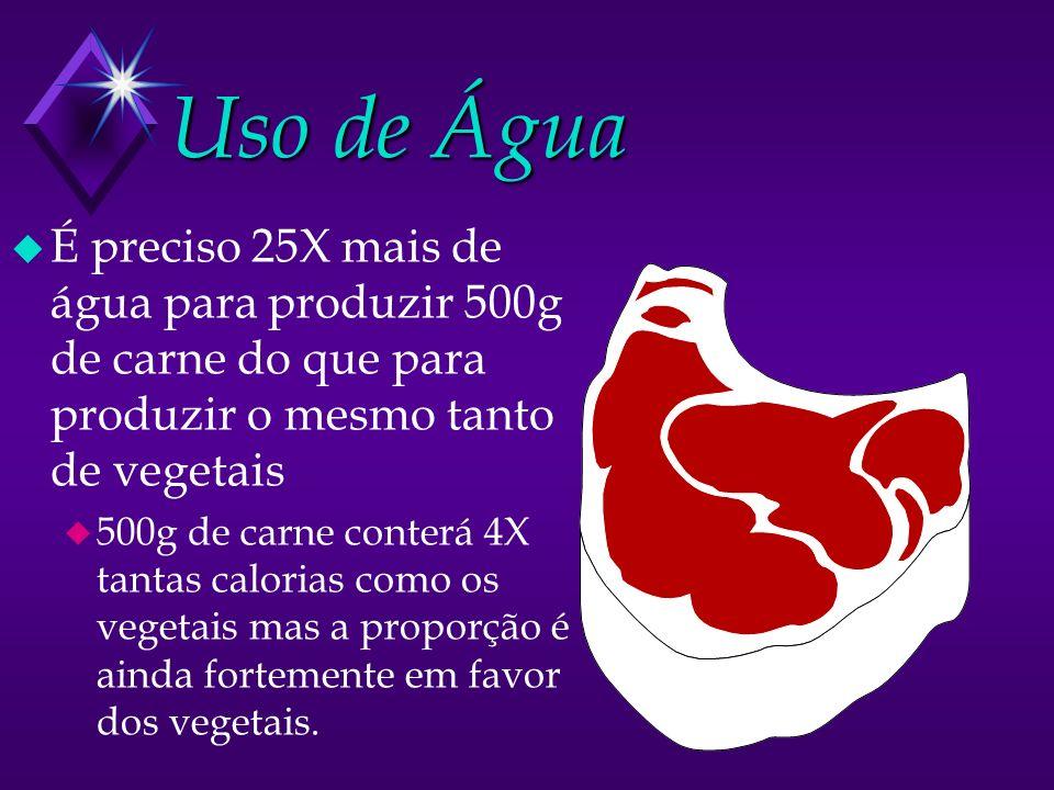 Uso de Água É preciso 25X mais de água para produzir 500g de carne do que para produzir o mesmo tanto de vegetais.