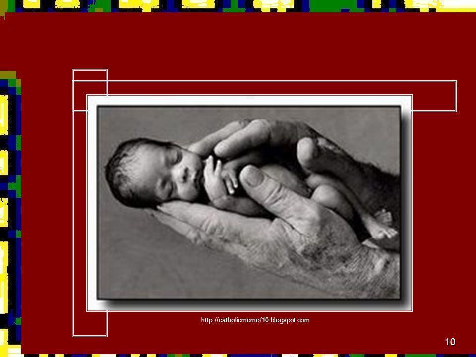 http://catholicmomof10.blogspot.com
