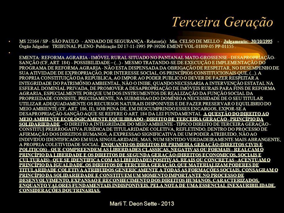 Terceira Geração Marli T. Deon Sette - 2013
