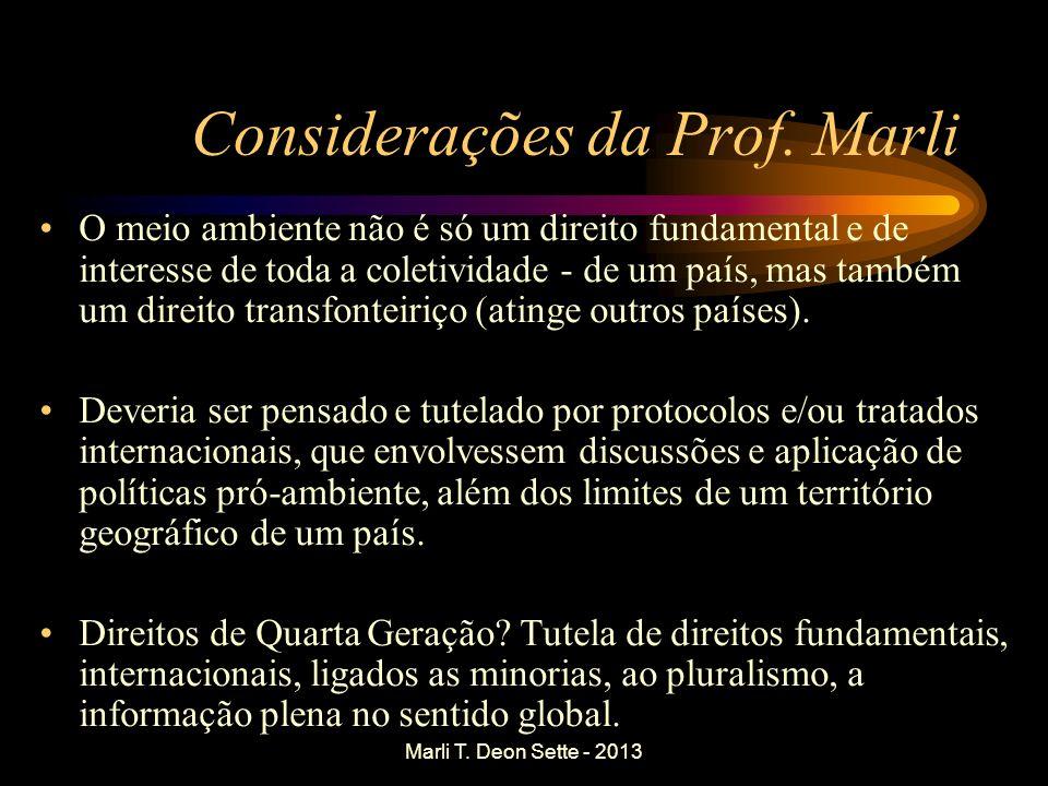 Considerações da Prof. Marli