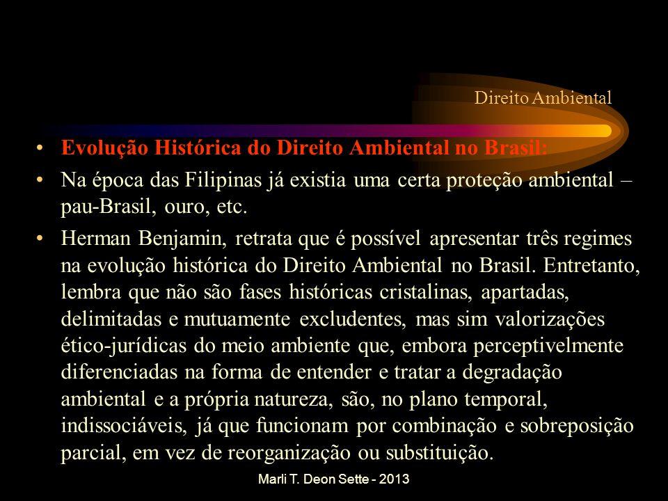 Evolução Histórica do Direito Ambiental no Brasil: