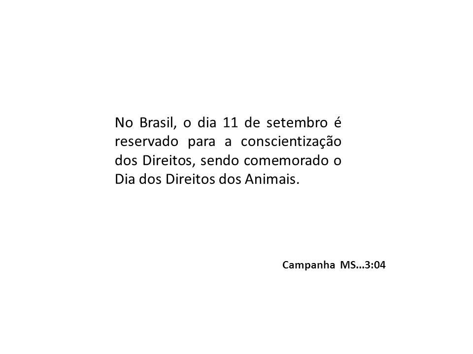 No Brasil, o dia 11 de setembro é reservado para a conscientização dos Direitos, sendo comemorado o Dia dos Direitos dos Animais.
