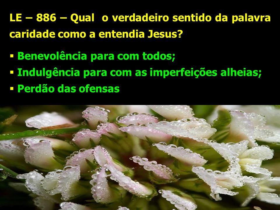 LE – 886 – Qual o verdadeiro sentido da palavra caridade como a entendia Jesus