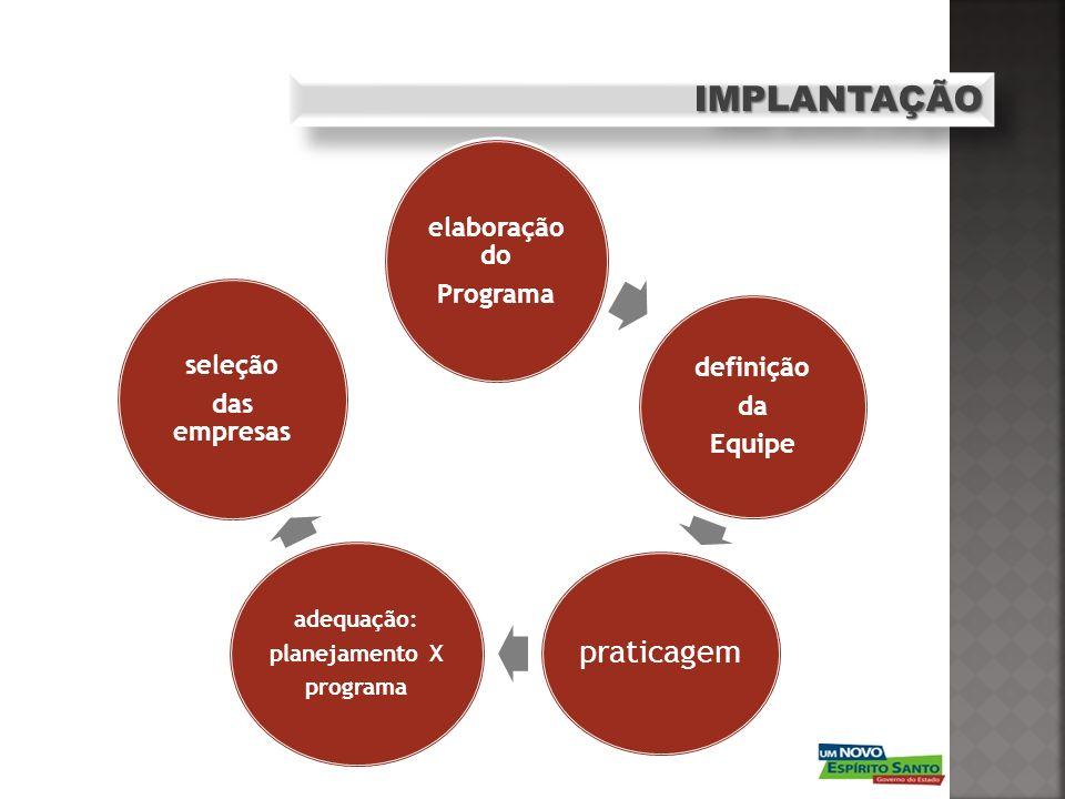 IMPLANTAÇÃO elaboração do Programa definição da Equipe seleção