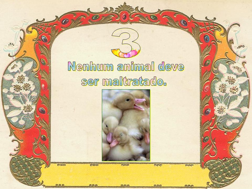 3 Nenhum animal deve ser maltratado.