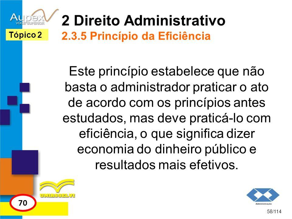 2 Direito Administrativo 2.3.5 Princípio da Eficiência