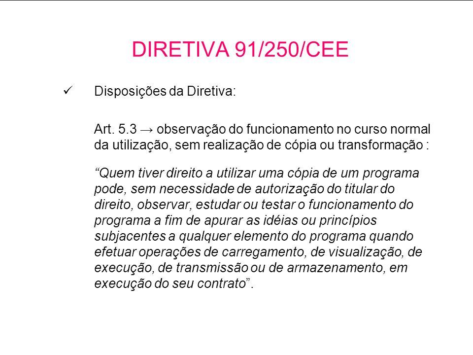 DIRETIVA 91/250/CEE Disposições da Diretiva: