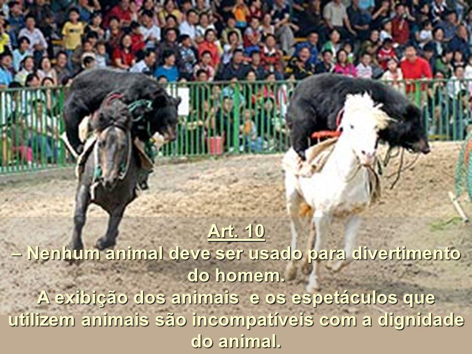 – Nenhum animal deve ser usado para divertimento do homem.