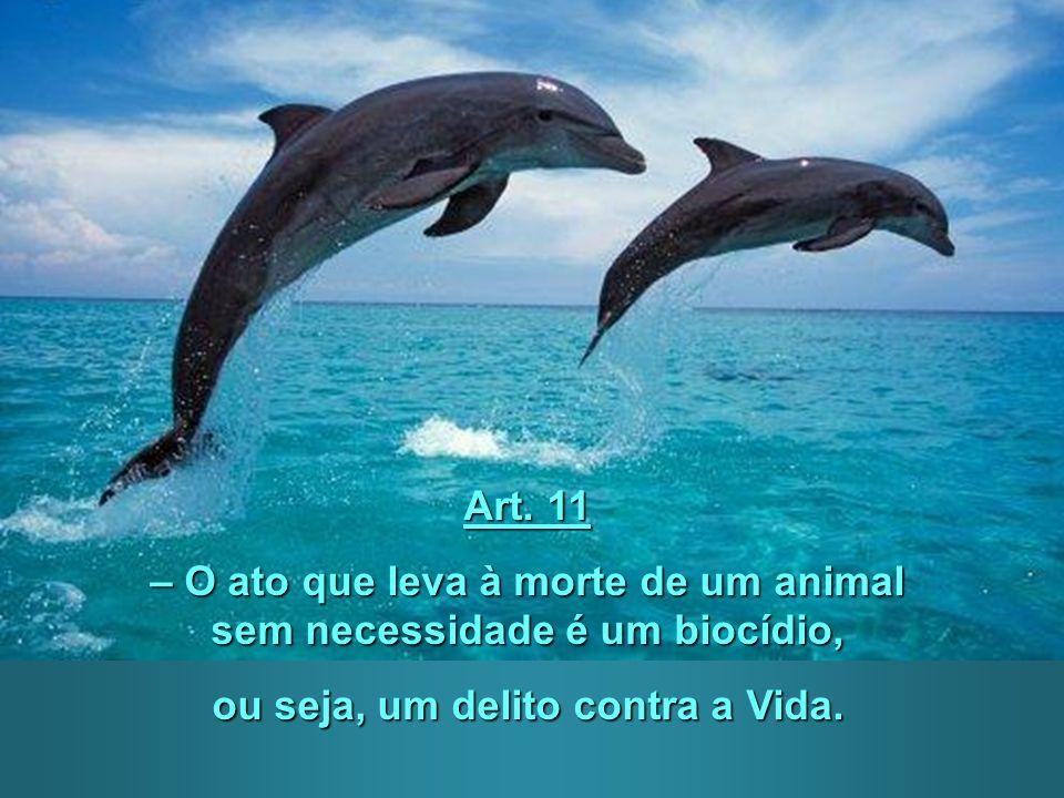 – O ato que leva à morte de um animal sem necessidade é um biocídio,