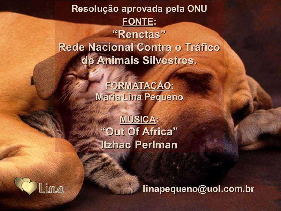 Rede Nacional Contra o Tráfico de Animais Silvestres.