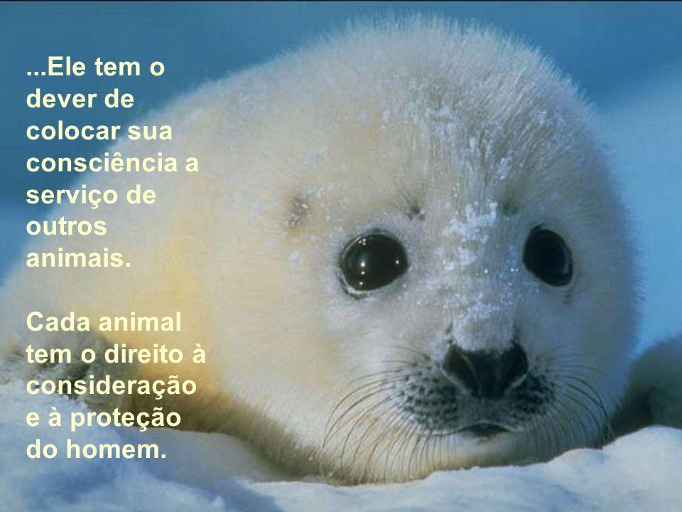 ...Ele tem o dever de colocar sua consciência a serviço de outros animais.