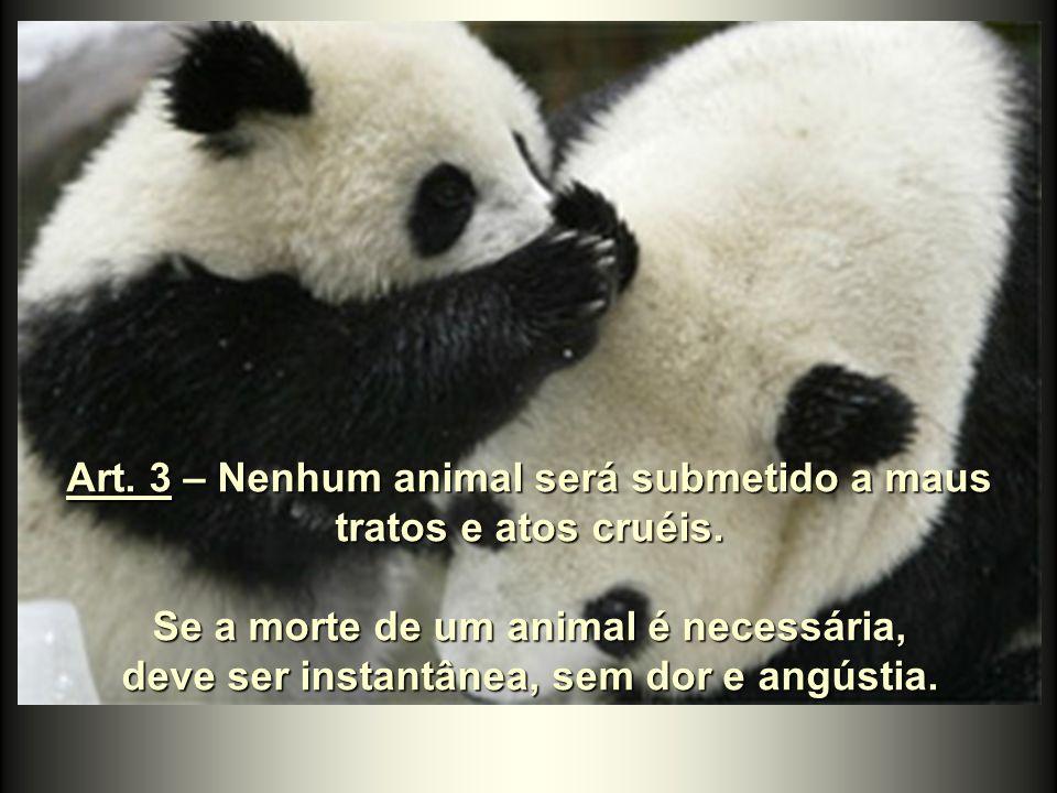 Art. 3 – Nenhum animal será submetido a maus tratos e atos cruéis.