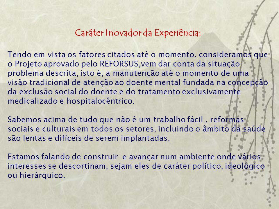Caráter Inovador da Experiência: