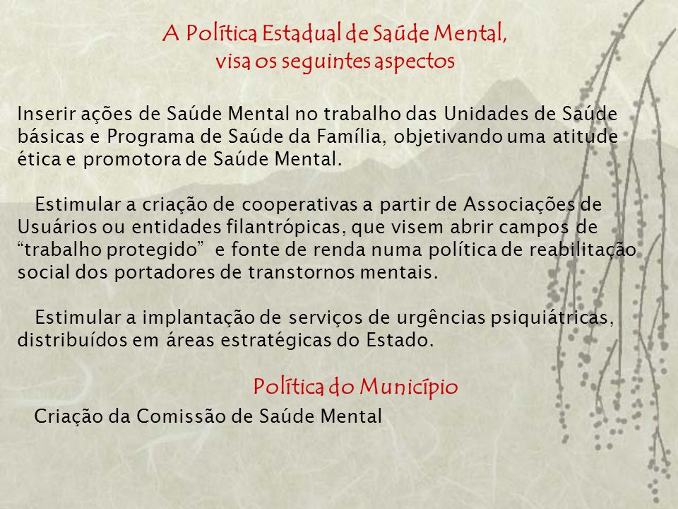 A Política Estadual de Saúde Mental, visa os seguintes aspectos
