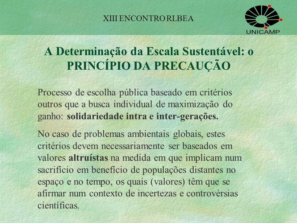 A Determinação da Escala Sustentável: o PRINCÍPIO DA PRECAUÇÃO
