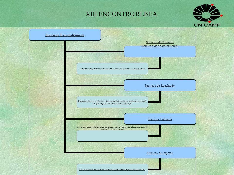 XIII ENCONTRO RLBEA