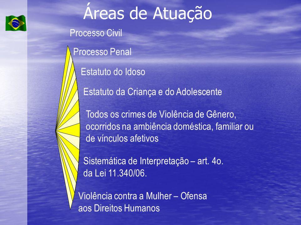 Áreas de Atuação Processo Civil Processo Penal Estatuto do Idoso