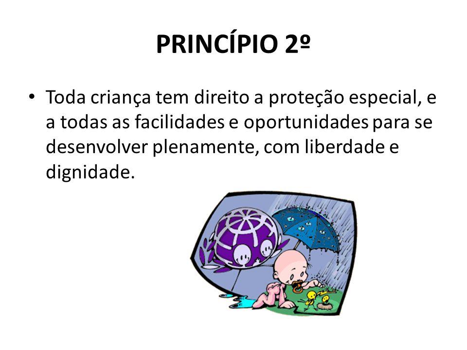 PRINCÍPIO 2º
