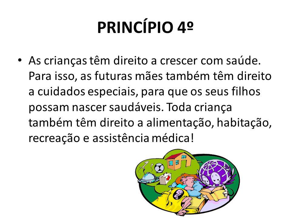 PRINCÍPIO 4º