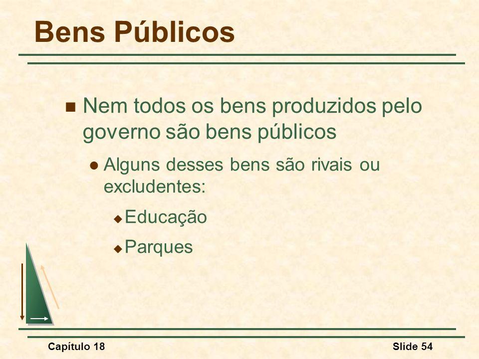 Bens Públicos Nem todos os bens produzidos pelo governo são bens públicos. Alguns desses bens são rivais ou excludentes: