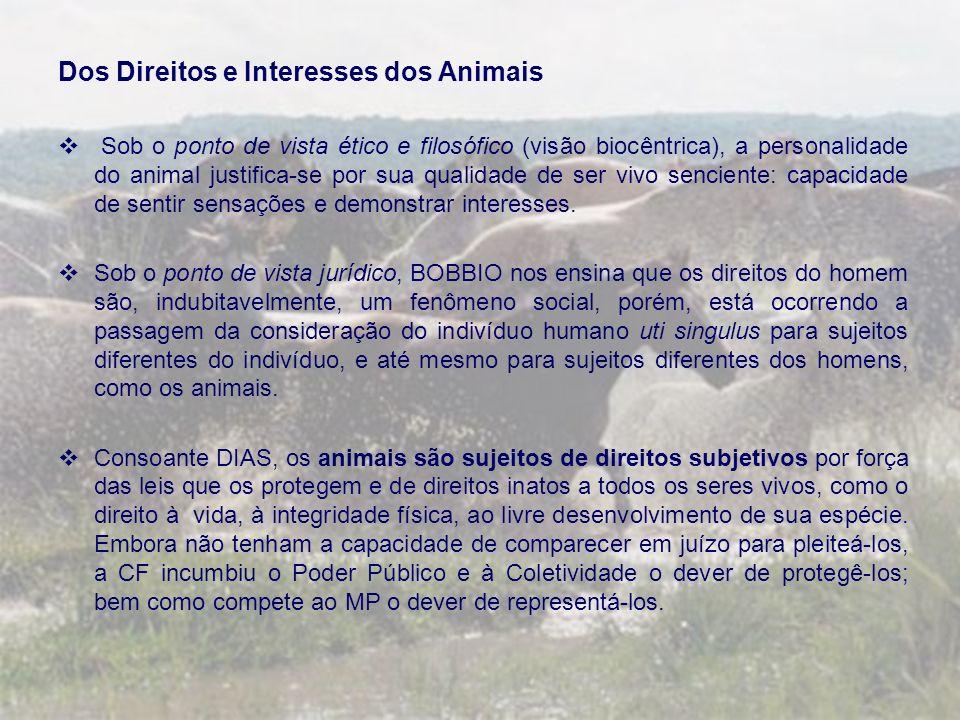 Dos Direitos e Interesses dos Animais