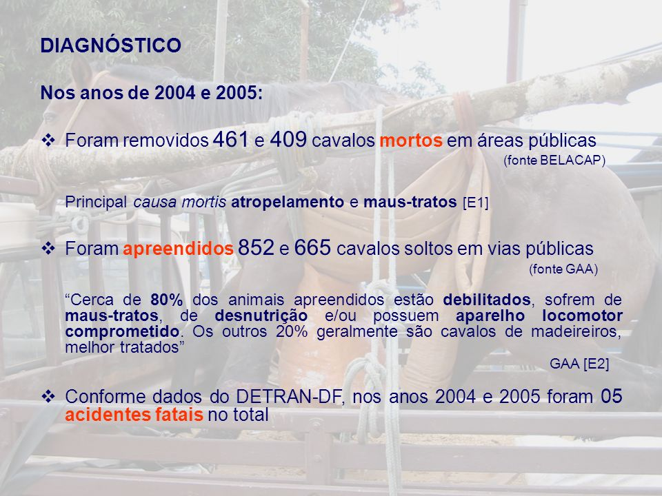DIAGNÓSTICO Nos anos de 2004 e 2005:
