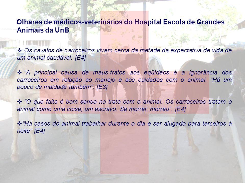 Olhares de médicos-veterinários do Hospital Escola de Grandes Animais da UnB